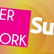 HUNTER ARTS NETWORK SURVEY – PROFESSIONAL DEVELOPMENT OPPORTUNITIES FOR ARTISTS